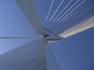 erasmus bridge, rotterdam,