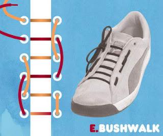 หนังสือสอนผูกเชือกรองเท้า
