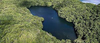 ภาพภ่ายทางอากาศ ทะเลสาบแมงกะพรุน