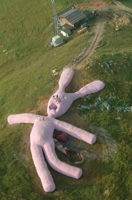 ตุ๊กตากระต่าย ใหญ่ที่สุดในโลก (Biggest Rabbit Doll)