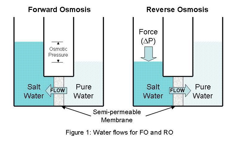 Image result for forward osmosis blogspot.com