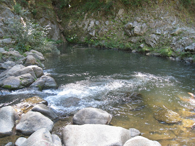 Swimming Holes of California San Lorenzo River , Garden of