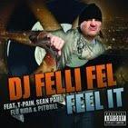 "DJ Felli Fel ""Feel it"" feat. T-Pain, Sean Paul, Pitbull, Flo Rida (click on picture to download)"