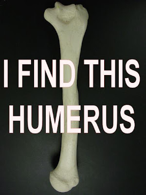 I find this 'humerus!'