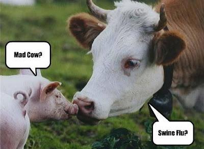 Animal Thoughts...