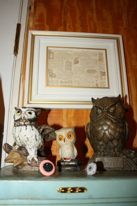 Green Owl Crafts I Give A Hoot All Things Owl Ish