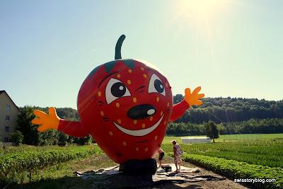 Urdorf Strawberry Man Switzerland