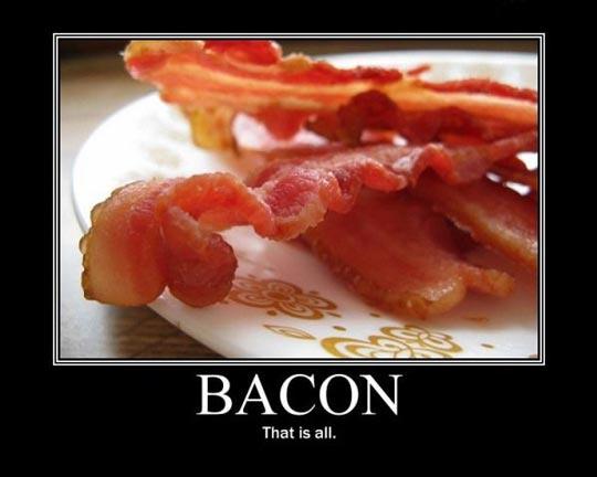 http://1.bp.blogspot.com/_1ece_1s4bkU/TCOMwkZNMyI/AAAAAAAAJCA/iPhpAZ0VH7Q/s1600/bacon.jpg