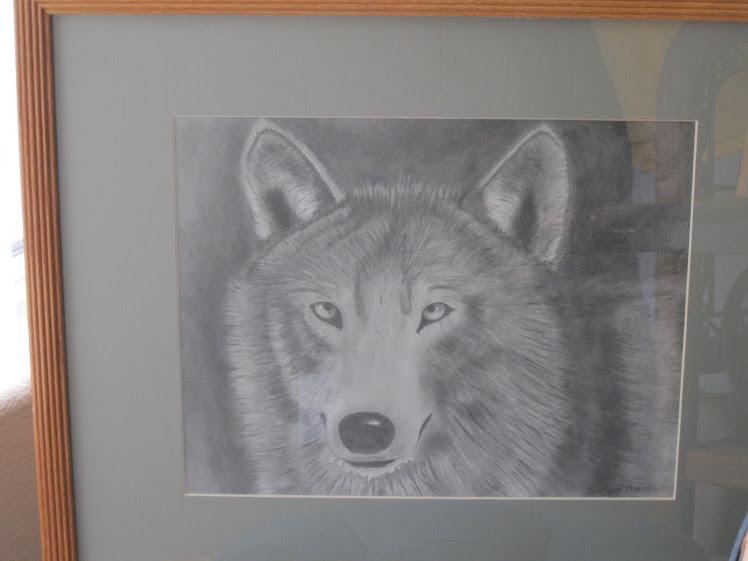 It's a wolf man