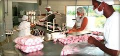 Pequeña Fabrica de Yogurt