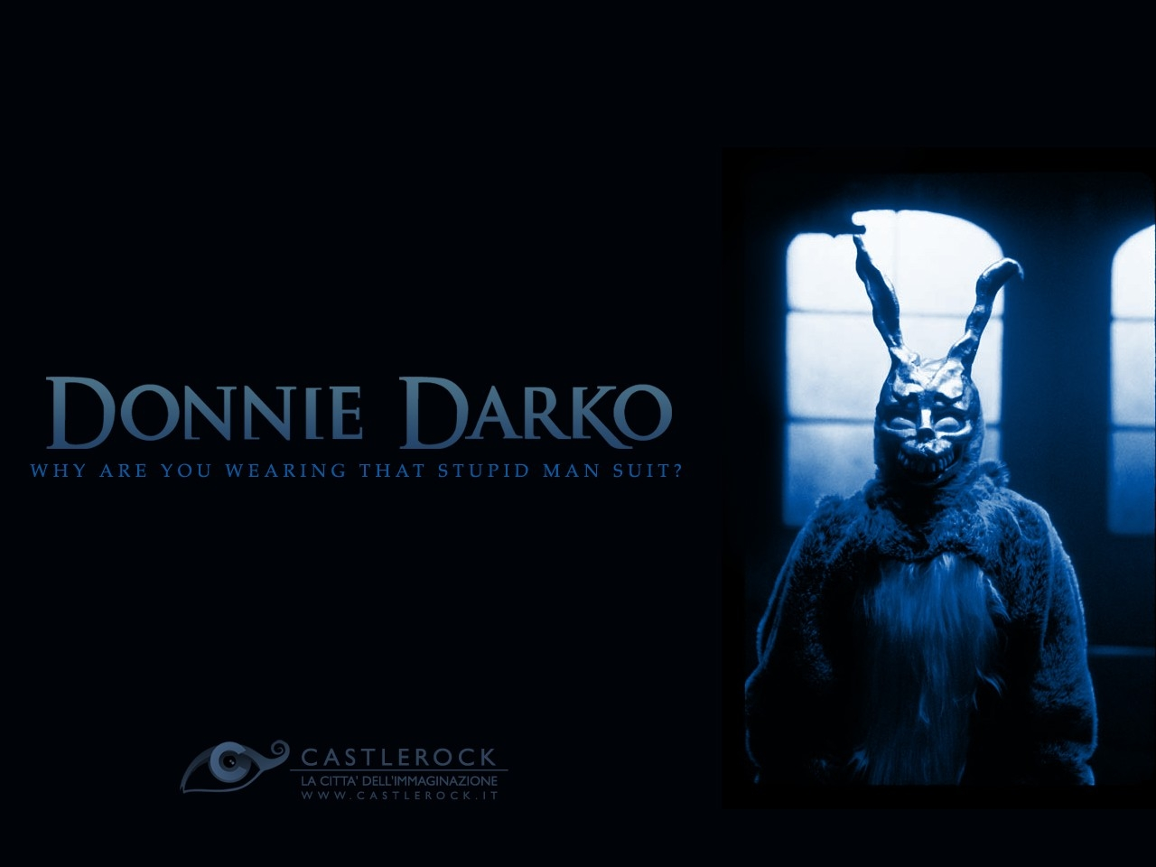 a comprehensive analysis of donnie darko a film directed by richard kelly Immediately download the donnie darko summary director richard kelly combines vulgar comedy and donnie darko, a film by richard kelly is about a.