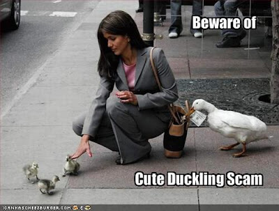 funny crimes. Crime alert tip provided by I