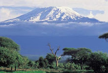 karibuni mt. kilimanjaro