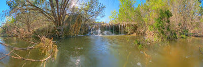 Bamberger Ranch, Upper Miller Creek, Warbler Trail Branch. ©2007 Chris W. Johnson