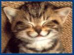 L'arte di sorridere