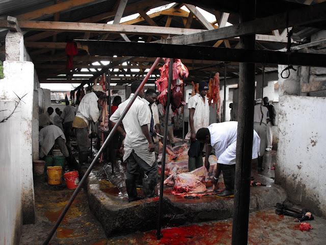 28 Novembre - L'abattoir de Ngaramtoni.