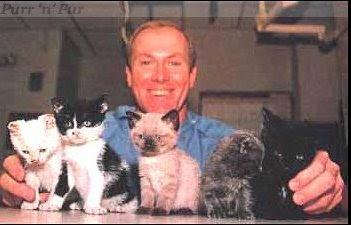 Кошатинские - Страница 5 Cat_scarletts-kits