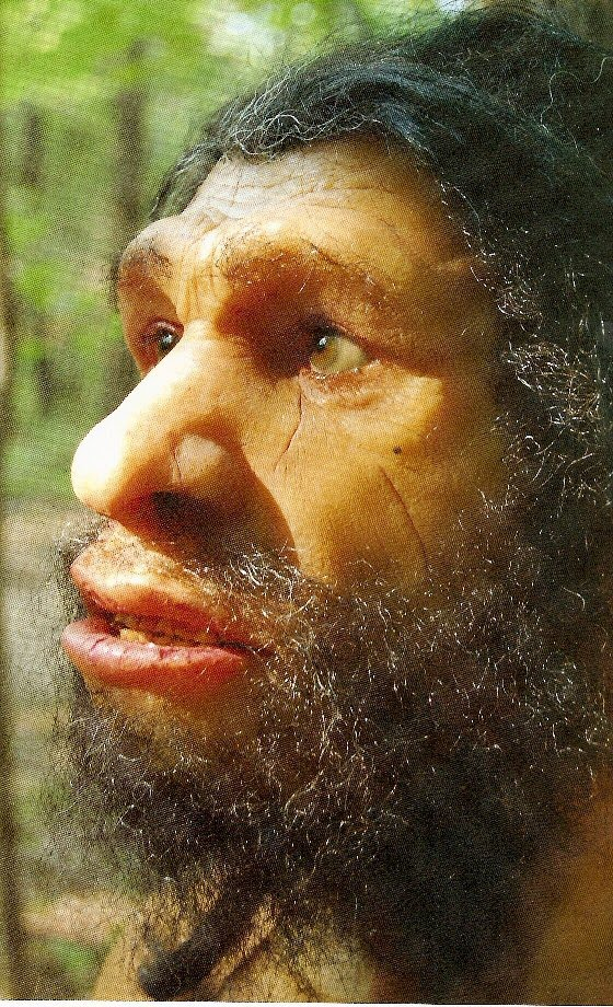 Neanderthal. ht...