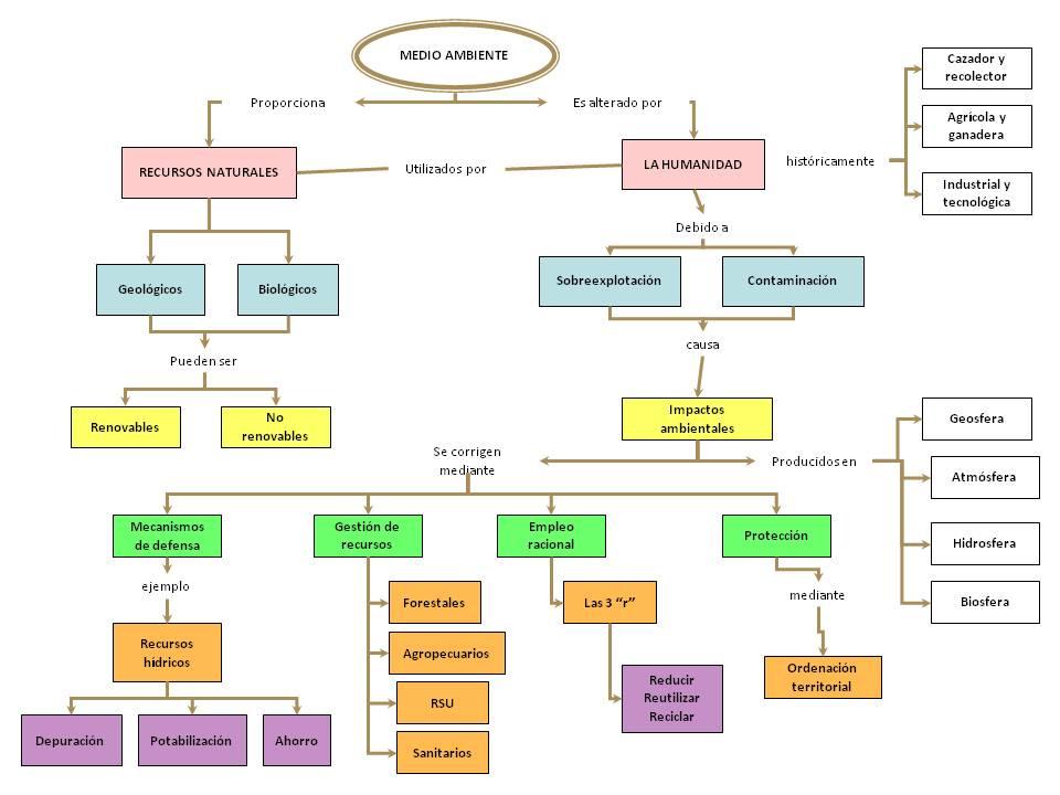 UD 12- Las actividades humanas y los impactos ambientales.