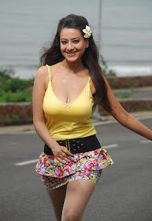 Madalasa Sharma Hot Stills From Alasyam Amrutham Telugu Movie hot photos