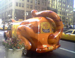 New York cat car