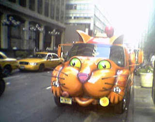cat car smiling
