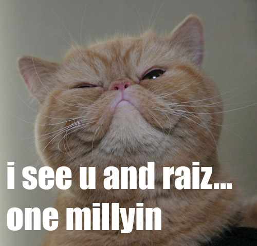 funny hilarious lolcat funny cat picture - funny cat pictures-lolcat-raisebid