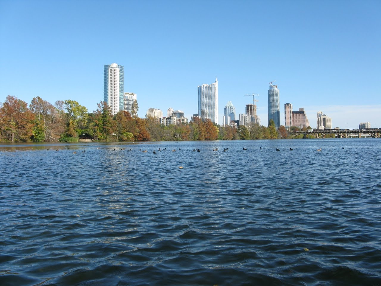 Lady Bird Lake - Wikipedia