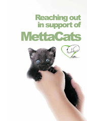 Buy MettaCats Notebooks