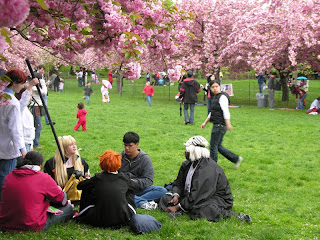 Cosplayers sitting in the grass at the Brooklyn Botanic Garden's Sakura Matsuri