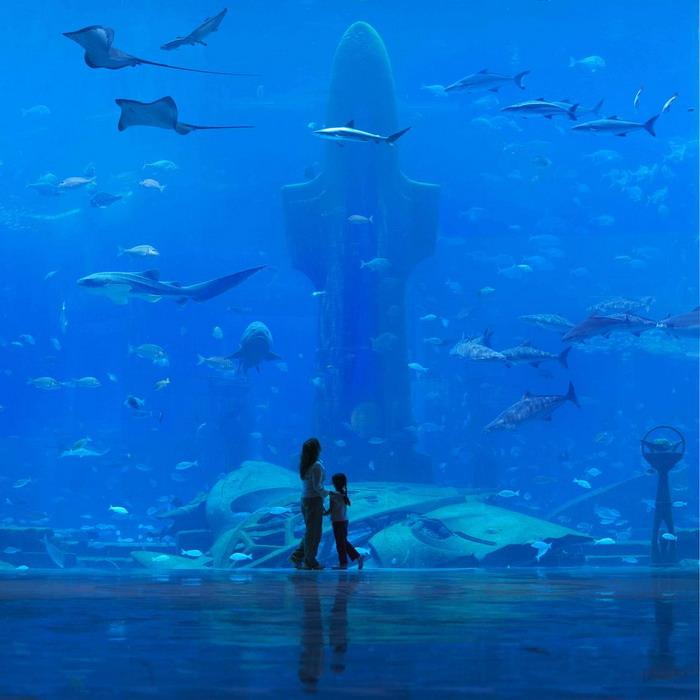 hotels under water in dubai. Underwater-hotel in Dubai