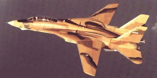 IRIAF F-14A against F-15I F+14+(16)