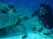 Sköldpadda och jag 2010