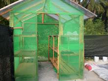 Iqilagro's Plant House