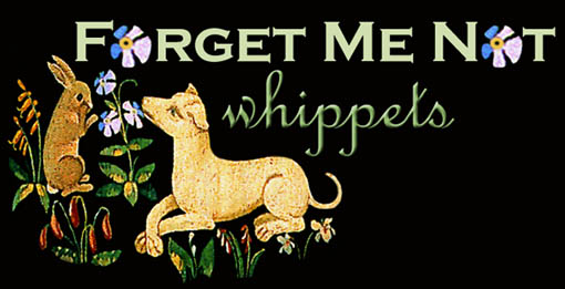 Forgetmenot Whippets Blog