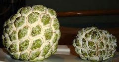Fruta Pinha