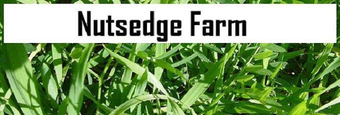 Nutsedge Farm