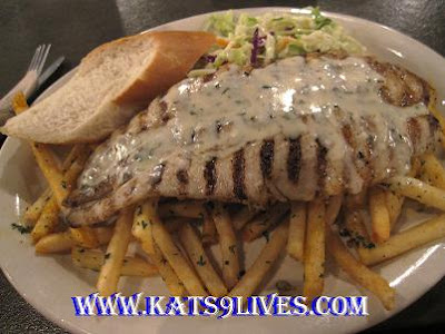 Kat 39 s 9 lives california fish grill foothill ranch for California fish grill locations