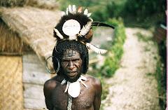 Diogwa Wenda