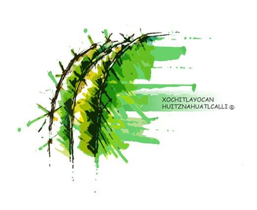 "XOCHITLAYOCAN HUITZNAHUATLCALLI ""cactus"""