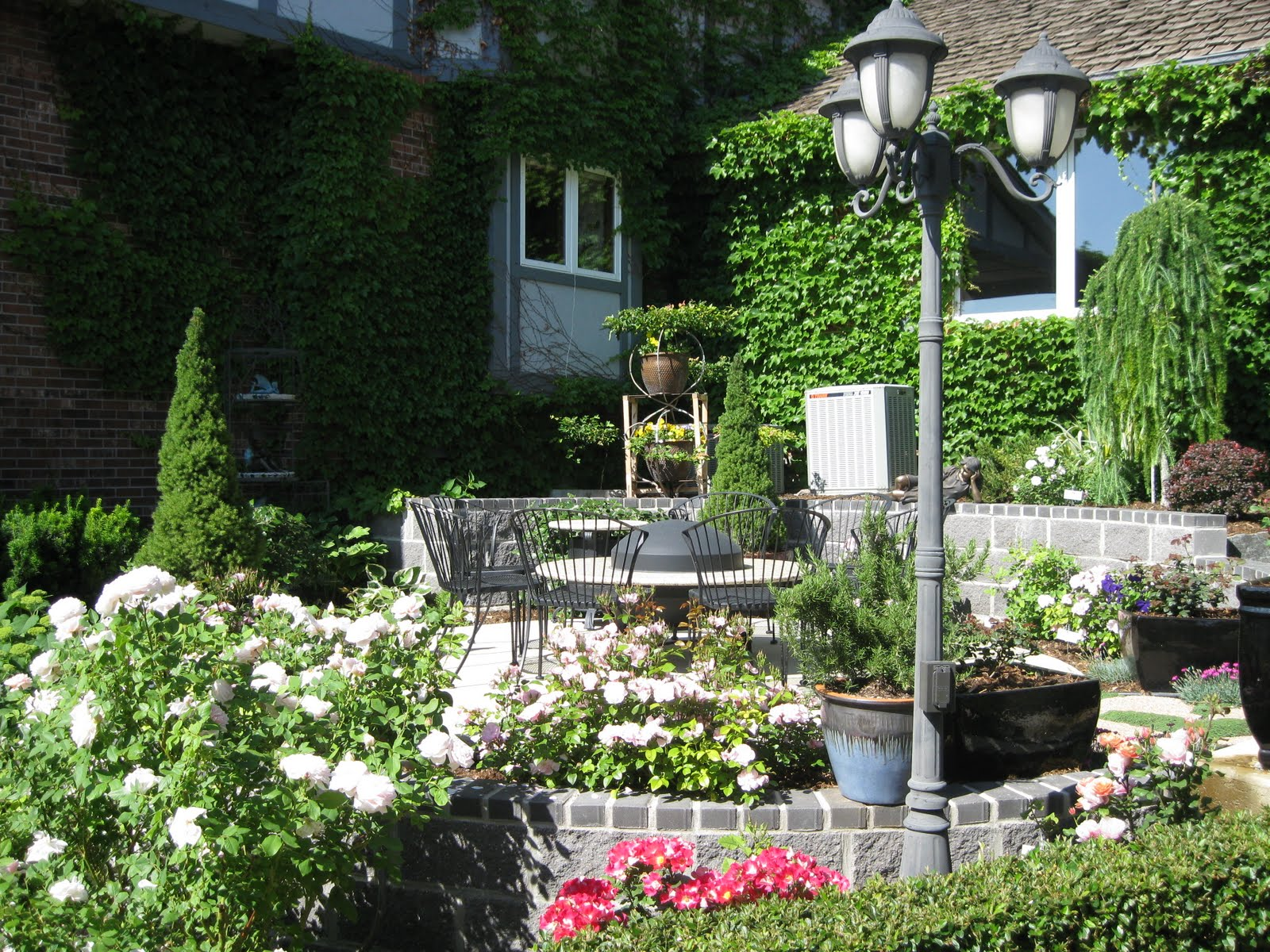 Kent and rolayne mediterranean garden for Mediterranean garden