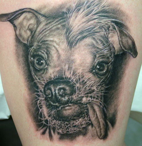 2011 Dog Tattoo Design. Download Full-Size Image | Main Gallery Page