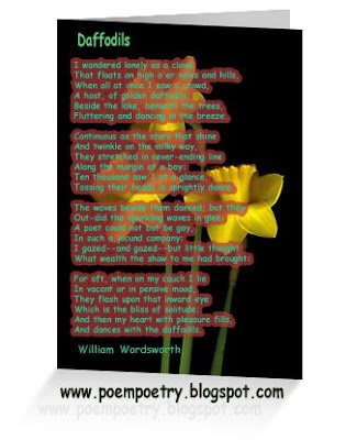 daffodils poem. 2010 A host, of golden daffodils; daffodils poem. daffodils poem by william