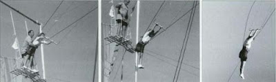 The Trapeze Swinger