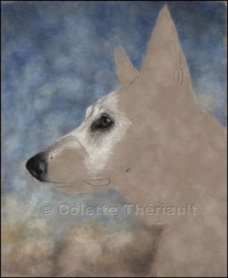 Step 2-White German Shepherd