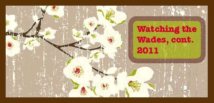 Watchin' The Wades