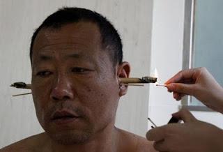 Китайская полынь против атрофии мозга