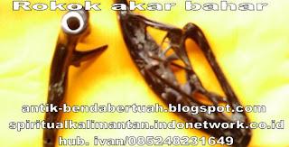cangklong rokok terbuat dari akar bahar