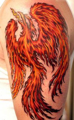 Fire Phoenix Tattoo