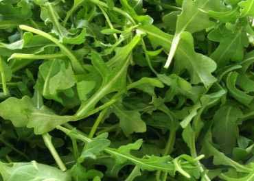 http://1.bp.blogspot.com/_25qjfrQ98uU/TCRZlSHRr2I/AAAAAAAABMU/asdiwq-gxms/s1600/roquette_salade.jpg